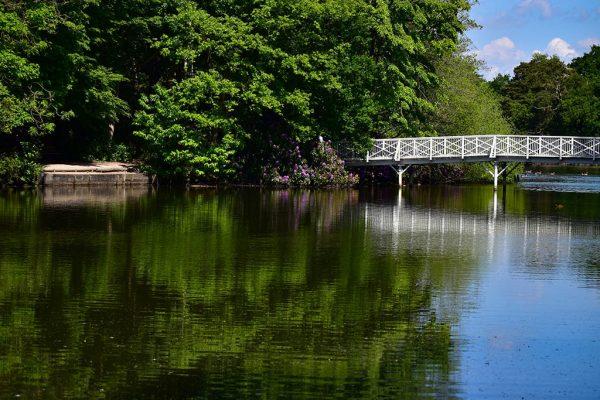 Hartsholme Country Park reservoir