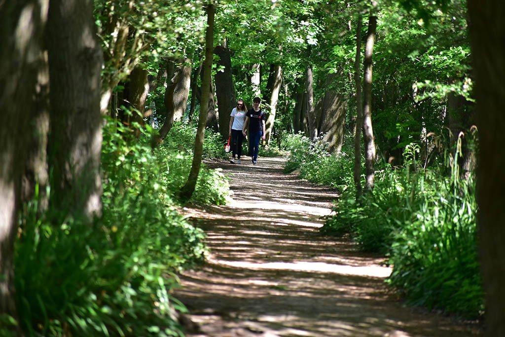 Hartsholme Country Park couple