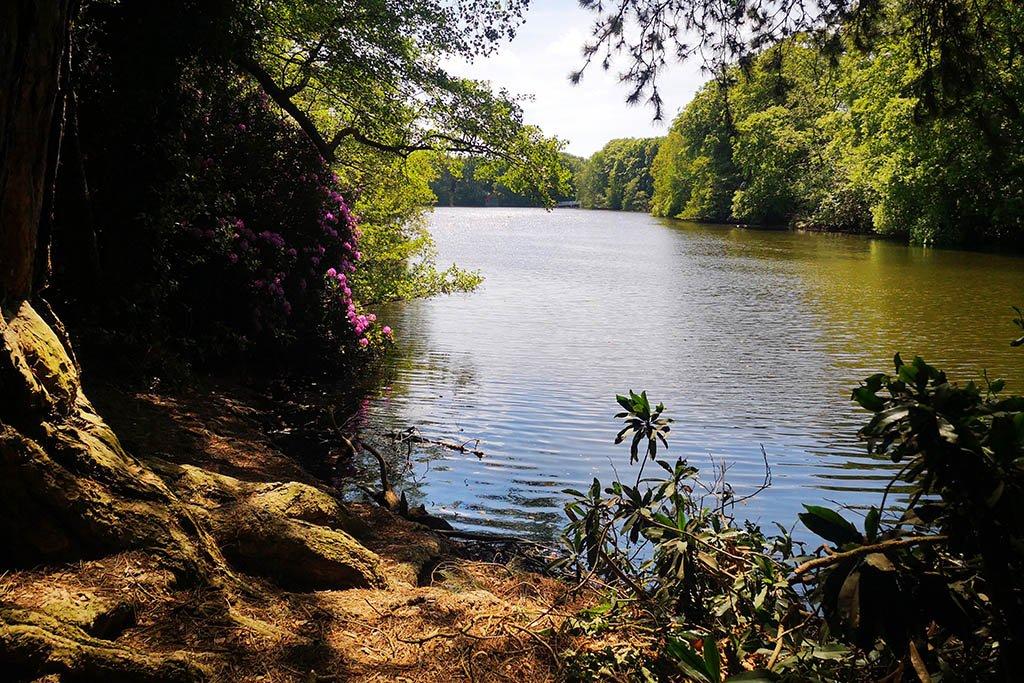 Hartsholme Country Park walks in Lincoln