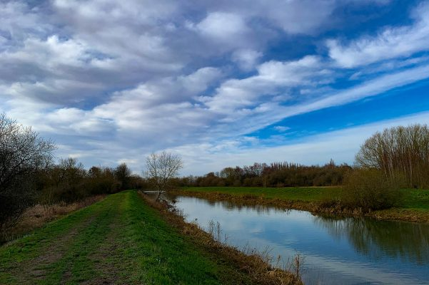River Witham walks in Lincoln