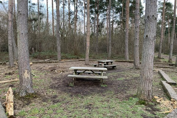 Skellingthorpe Old Wood picnic benches