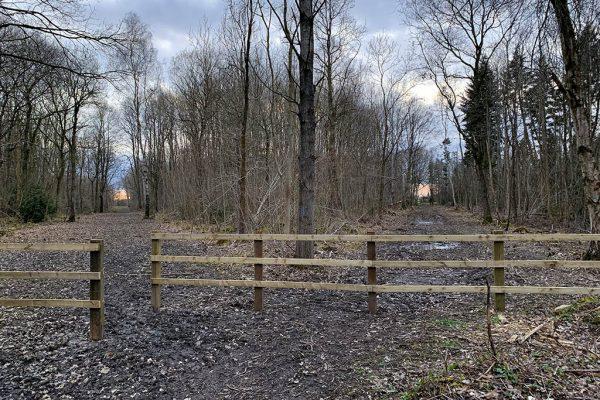 Skellingthorpe Old Wood two sunset paths