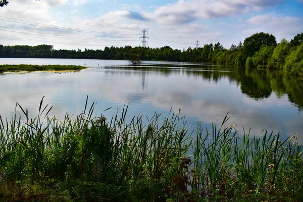 Whisby Nature Park lake