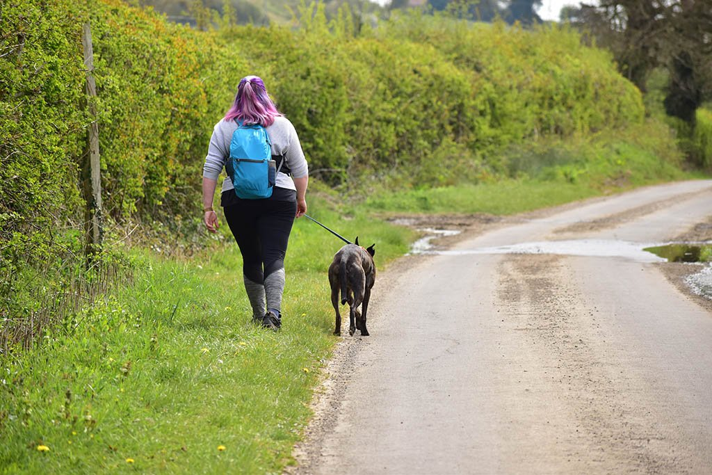 We brought our dog Regan along with us for the Lindsey Trail north route