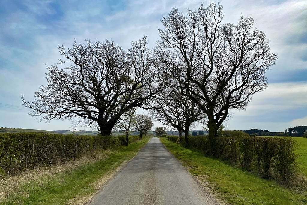 Walesby road Lincolnshire Wolds